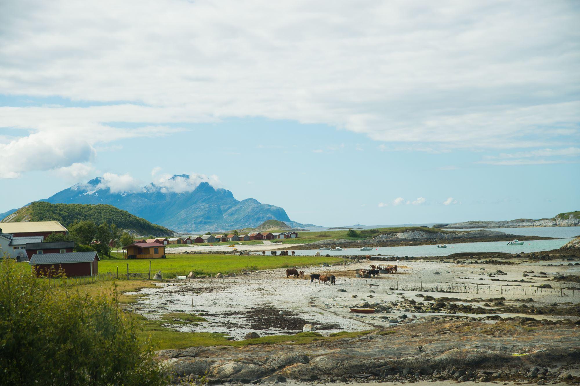 Kjerringøy Handelsted