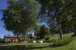 Vevelstad rural musuem