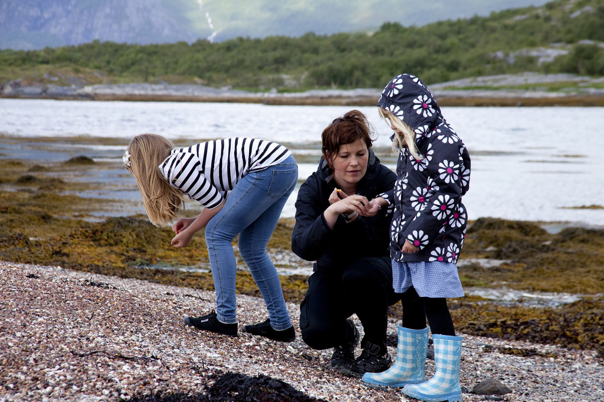 Øya Langholmen landskapsvernområde