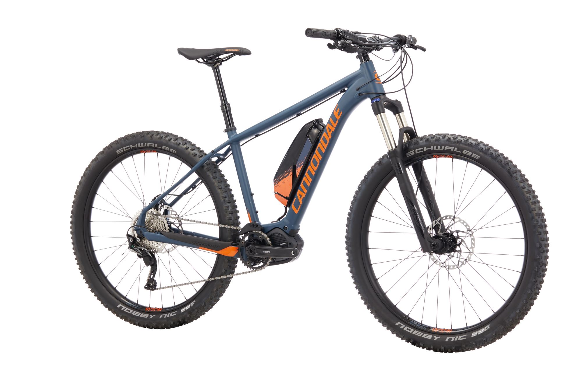 Electric bike rental, 1 day